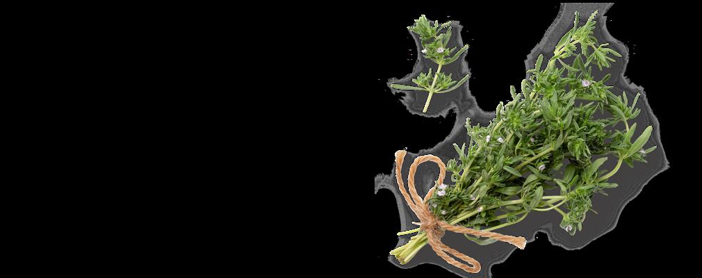 Изображение на стрък прясна чубрица