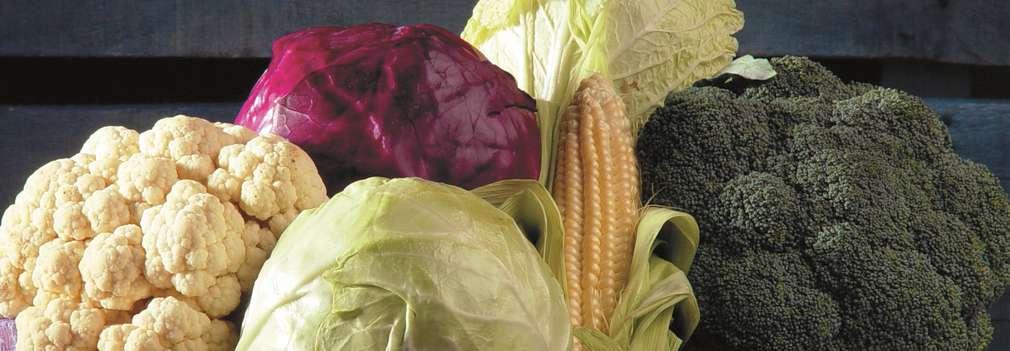 Изображение на щайга, пълна с различни сезонни зеленчуци - зеле, броколи, карфиол и др.