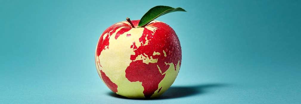 Изображение на ябълка, върху която се виждат световните континенти