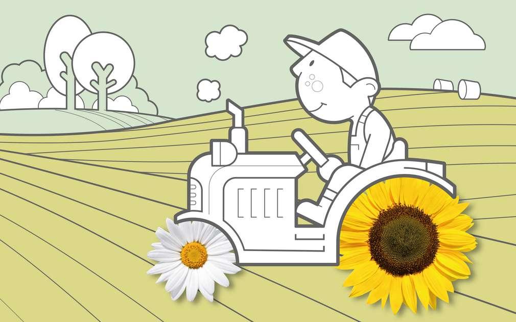 V Kauflandu podporujeme ekologické zemdělství za férových podmínek.