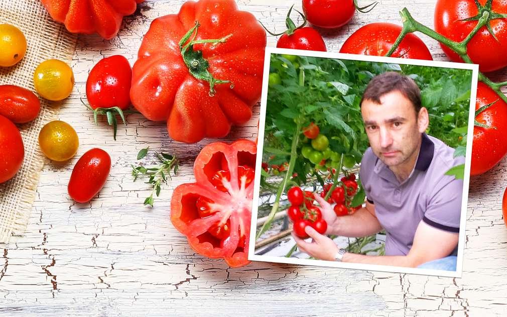 Ověřili jsme pro vás kvalitu rajčat z Tvrdonic