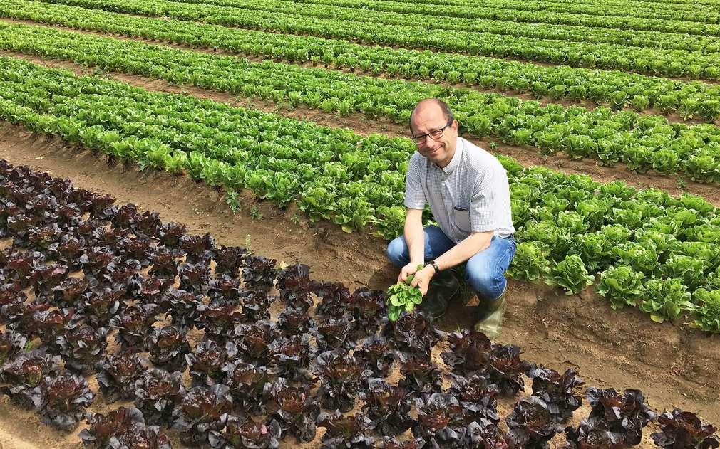 Pan Valtr nám ukázal pole, kde rostou salátky
