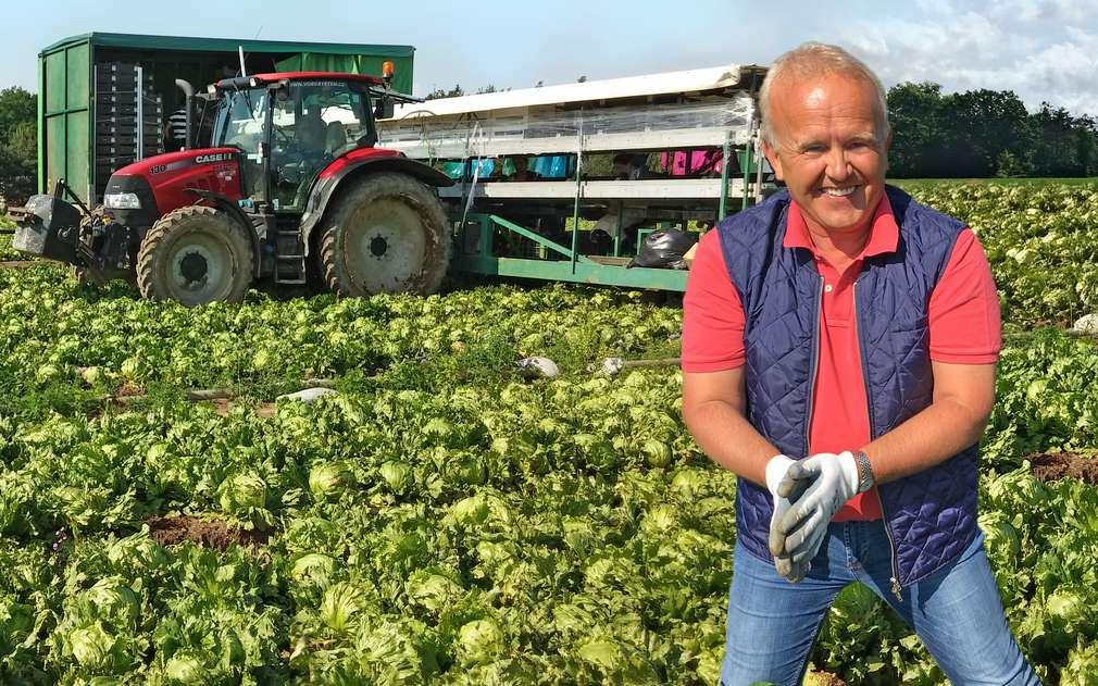 Pan Pokorný pěstuje v Semicích brambory