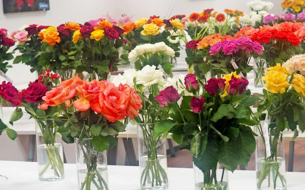 Řezané růže v různých barvách