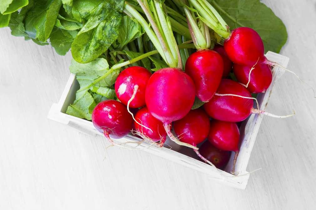 Essen im Mai: Unsere Lieblinge des Monats