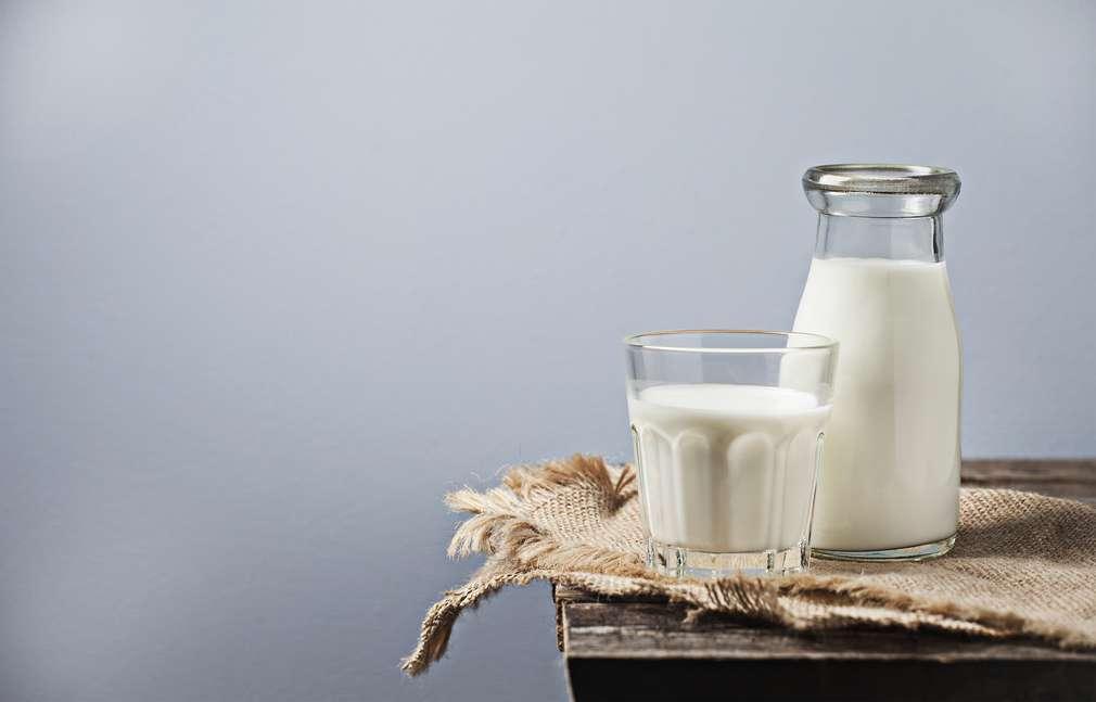 Alles dreht sich um Milch