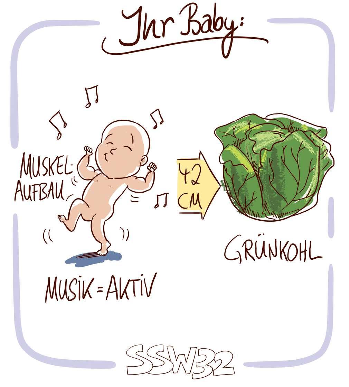 Infografik: Baby SSW 32