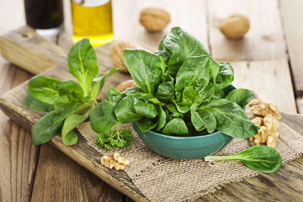 Feldsalat: Rapunzel aus der Küche