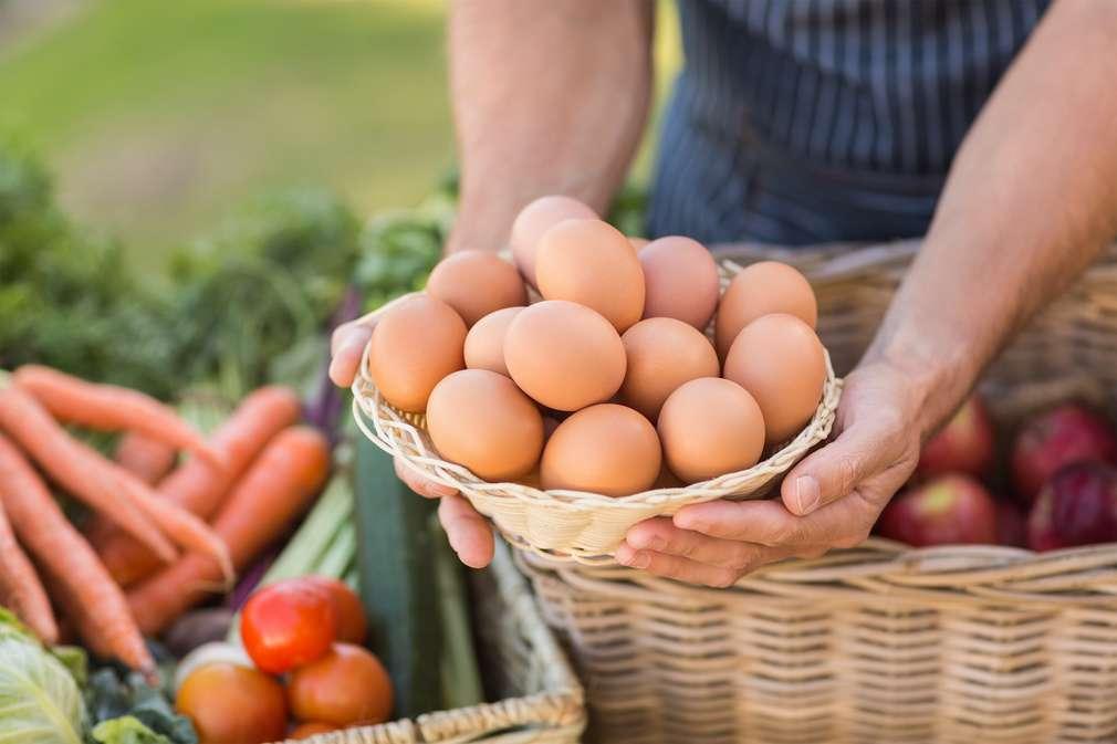 Regionale Bioprodukte: Wie man sie erkennt