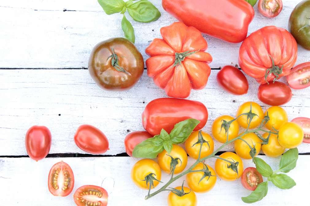 Kleiner Tomaten-Atlas