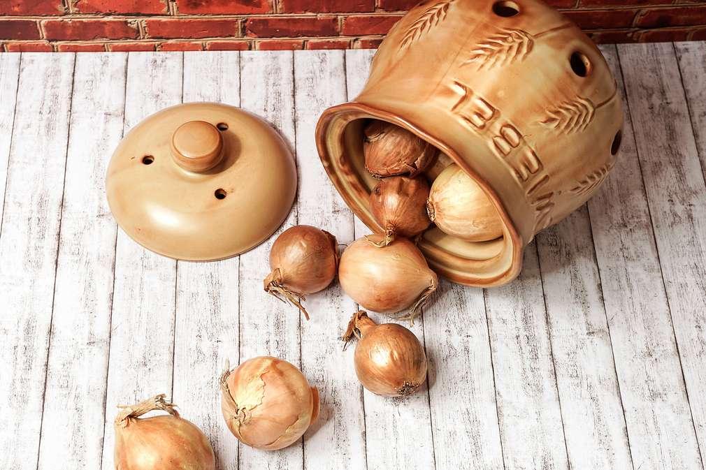 Zwiebeln in Keramiktopf