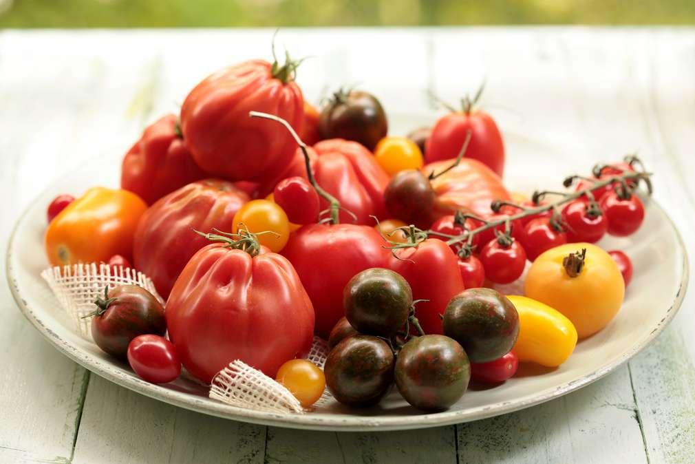 Tomaten lagern: Am besten in Einzelhaft nehmen