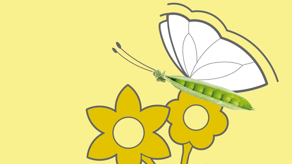 Illustration: Schmetterling auf Blume