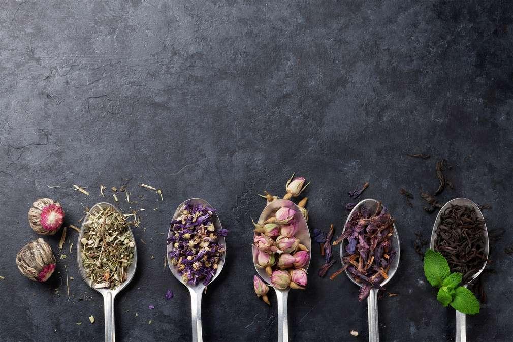 Tee selber machen: DIY-Mischungen aus Kräutern und Früchten
