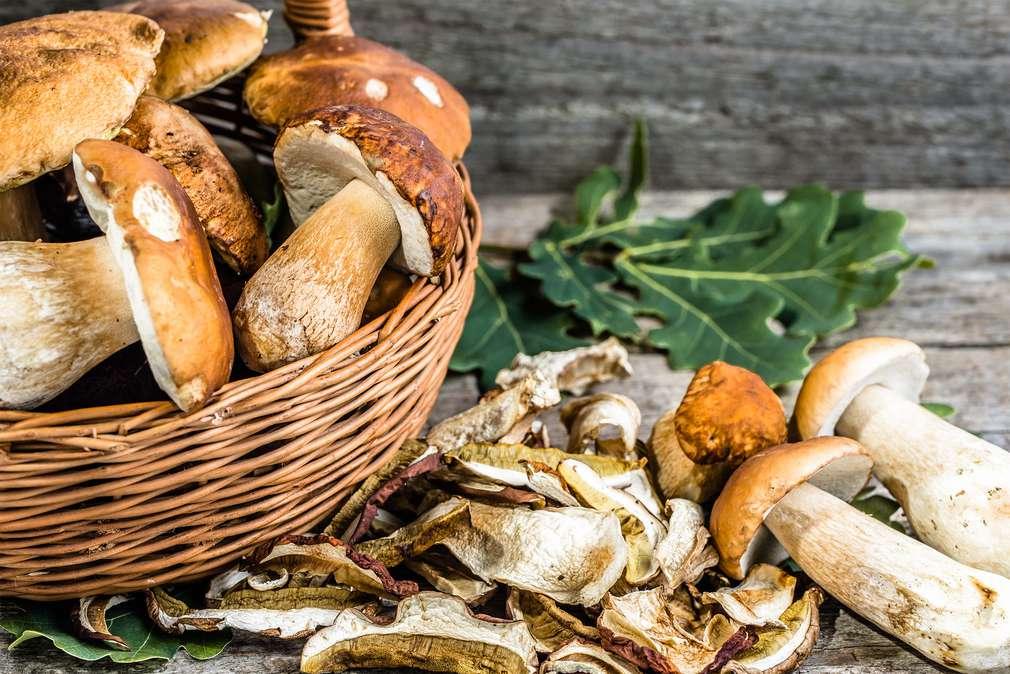 Pilze konservieren - ab in die Vorratskammer