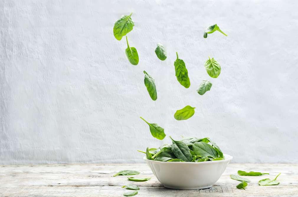 Spinat richtig zubereiten – So geht´s