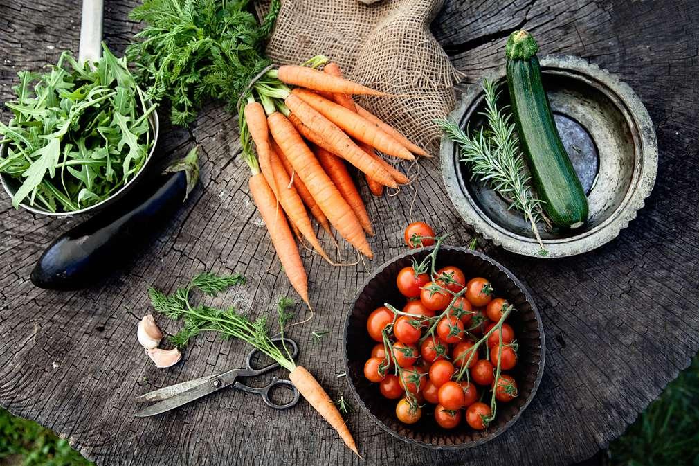 Vegetarier-ABC: Wer isst was?