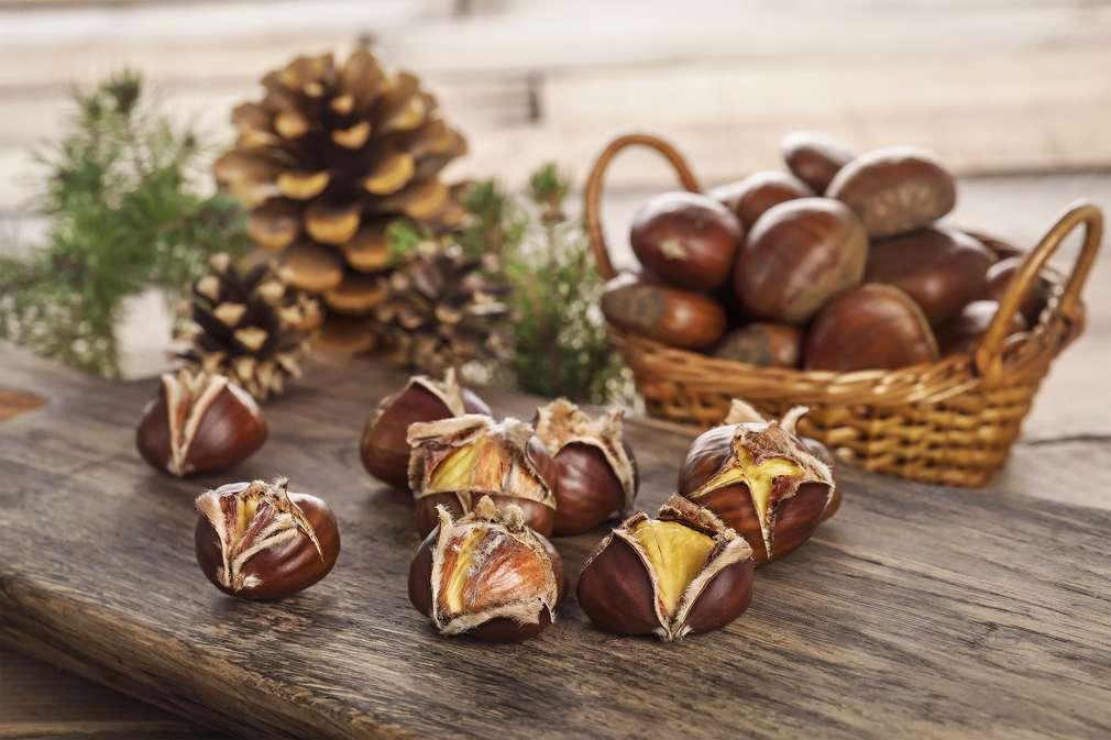 Maronen und Esskastanien: Ein gefundenes Essen