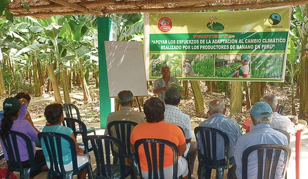 Ausbildung von Kleinbauern in Querecotillo