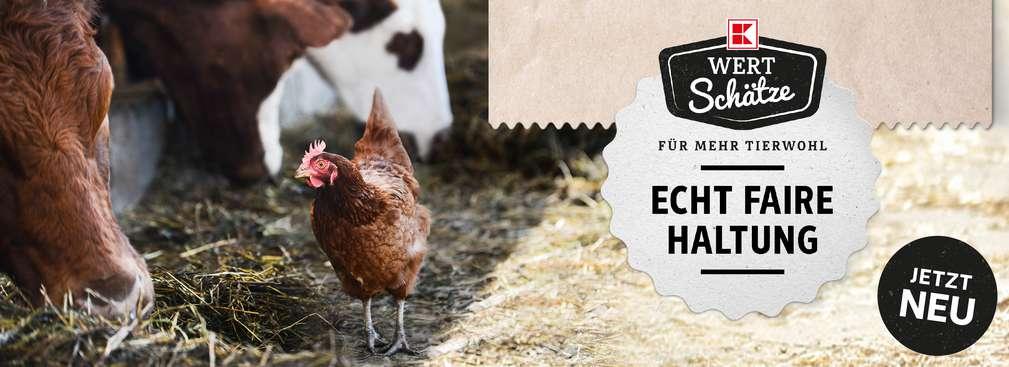 Huhn und Kuh im Stall; Logo: K-Wertschätze; Schriftzug: Echt faire Tierhaltung; Störer: Jetzt neu