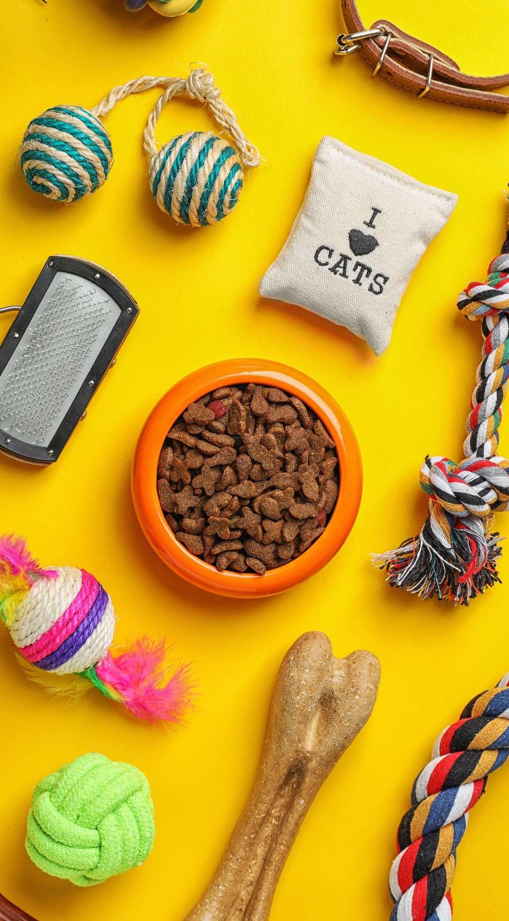 Hrană, jucării pentru animale