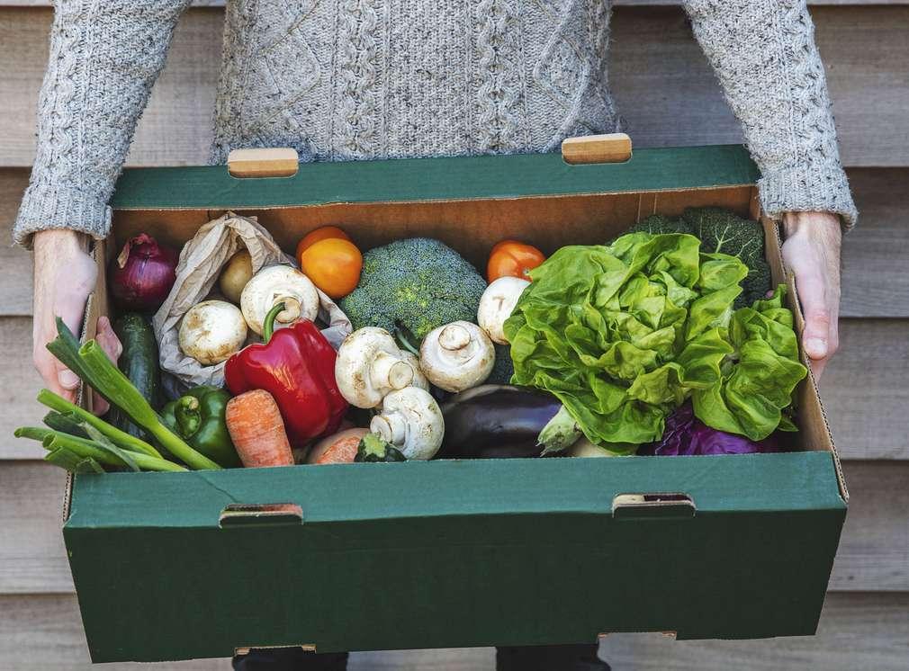 legume, fructe, risipa alimentara