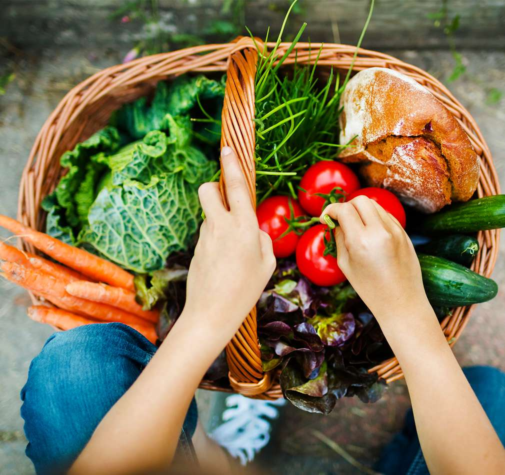 Darovanie potravín