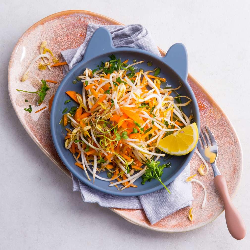 Abbildung des Rezepts Sprossen-Rohkost-Salat