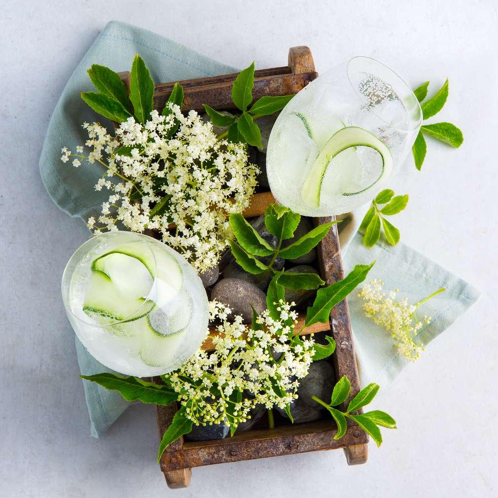 Abbildung des Rezepts Gin Floral