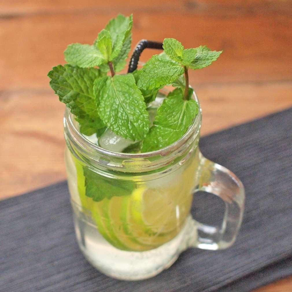 Zobrazit Mátový gin tonic receptů