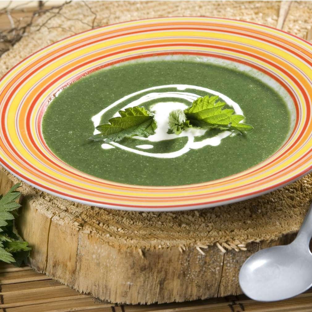 Imaginea rețetei Supă cremă de urzici