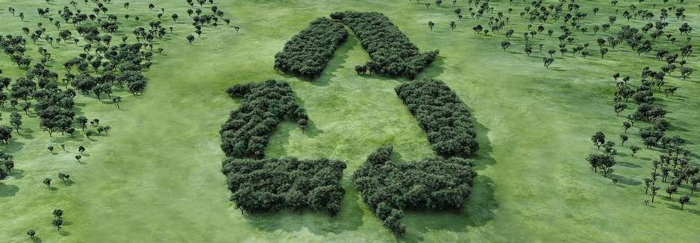 Mehrere Bäume bilden das Recycling Logo