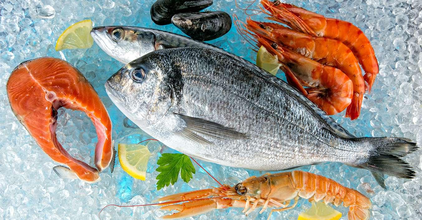 frischen fisch kaufen so wird� s ein guter fang kaufland