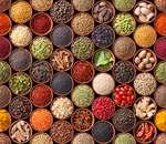 Gewürzlexikon international: Exotisches für den besonderen Geschmack