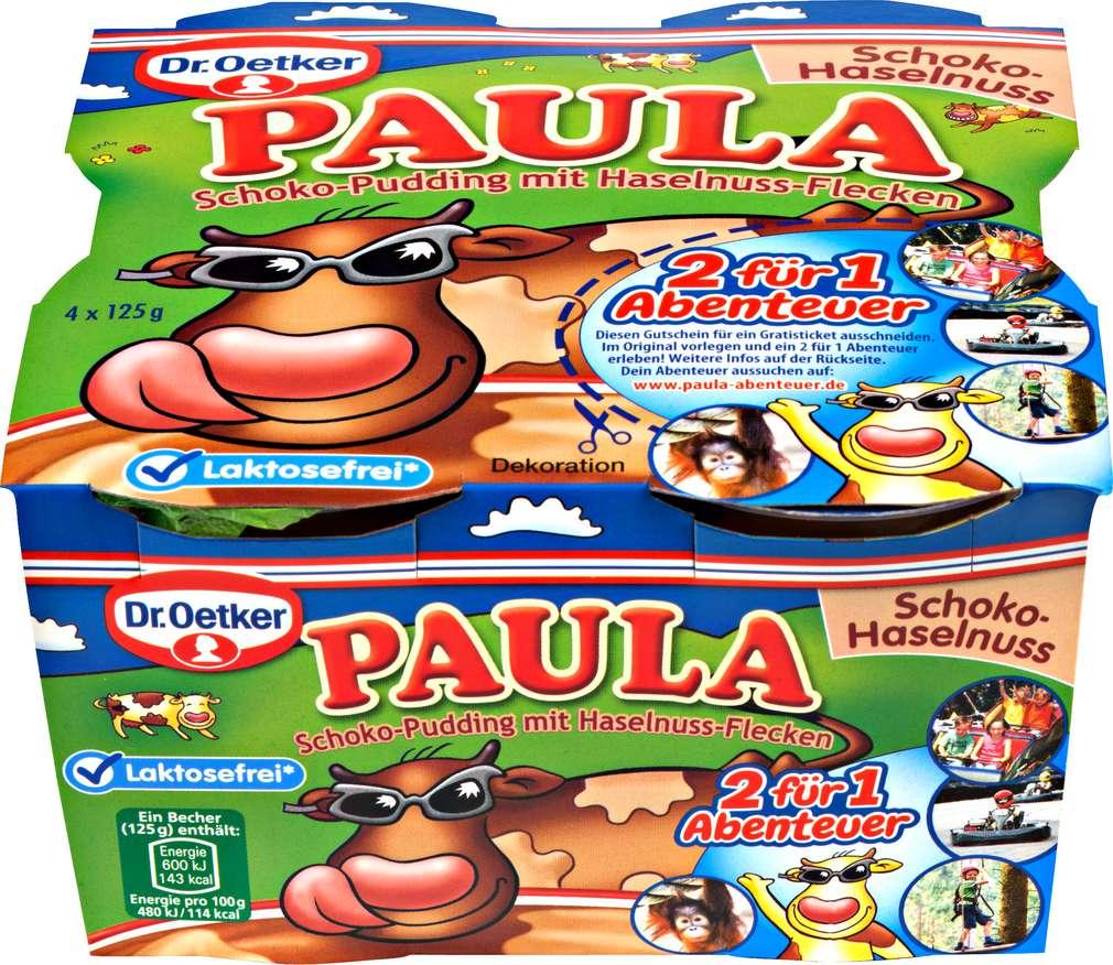 Abbildung des Sortimentsartikels Dr. Oetker Paula Pudding Scho-Haselnu.Lactofr 4x125g