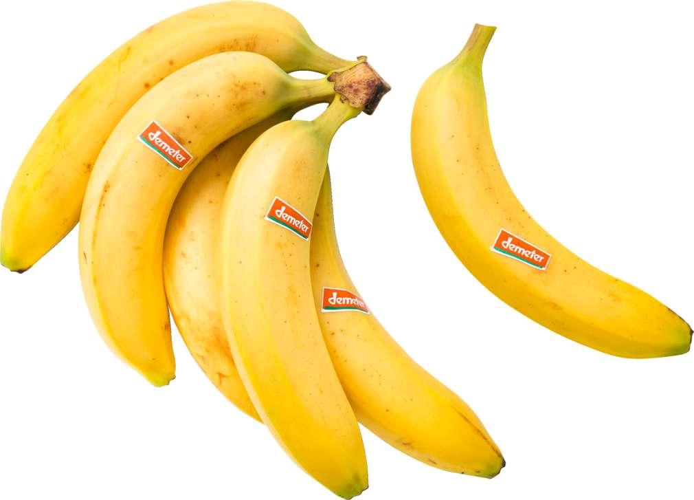 Abbildung des Sortimentsartikels Demeter Bananen