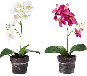 Abbildung des Angebots Künstliche Orchidee
