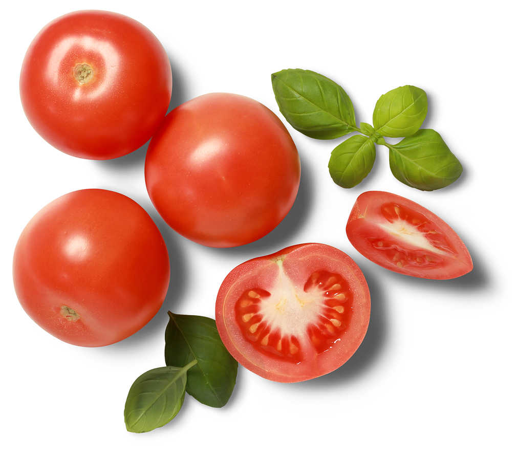 Abbildung des Angebots marokkanische/spanische runde Tomaten