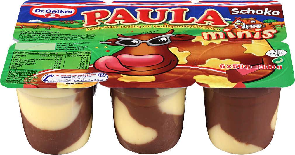 Abbildung des Angebots DR. OETKER Paula Pudding-Minis